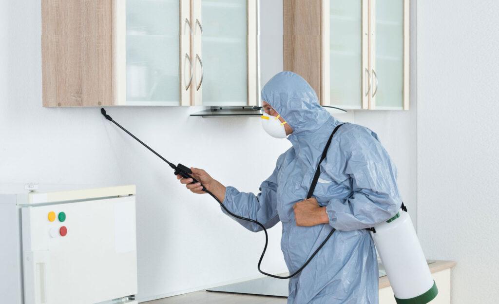 Cleaning companies ajman